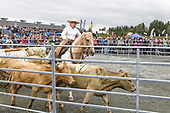 Agrisjå 2017 Landbruksmesse Trøndelag