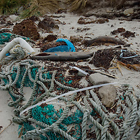 Various flotsam washes ashore on a beach on Carcass Island, in Britain's Falkland Islands.