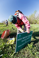 """Volunteers installing """"no mowing"""" sign at Great American Seed Bomb event harnessing volunteers to plant natives prairie and wildflower seeds in North Texas prairies, Great Trinity Forest, Dallas, Texas, USA"""