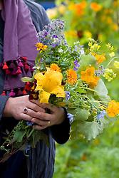 Sarah holding edible flowers including borage, marigolds, viola, squash and chicory