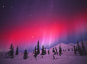 Red aurora during geomagnetic storm on January 17, 2005, Talkeetna Mountains near Jack Creek east of Cantwell, Alaska.