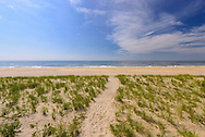 Path to Beach, Meadow Lane, Southampton, Long Island, New York