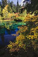 Clear Lake Impressions