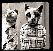Mummified Egyptian Cat and Kitten from the British Museum, London