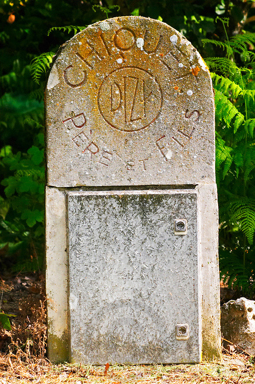A typical champagne champenoise mile stone or marker stone that indicates the owner of the vineyard: Chiquet Pere & Fils in Dizi, Champagne Jacquesson in Dizy, Vallee de la Marne, Champagne, Marne, Ardennes, France, low light grainy grain
