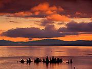 Tufa Formations, Clouds and Mono Lake at Dawn, Mono Lake, Mono Basin National Forest Scenic Area, California