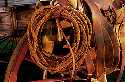 woven rope wound on a saddle