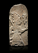 Hittite monumental relief sculpture ofa God probably holding lightning rods. Late Hittite Period - 900-700 BC. Adana Archaeology Museum, Turkey. Against a black background .<br /> If you prefer to buy from our ALAMY STOCK LIBRARY page at https://www.alamy.com/portfolio/paul-williams-funkystock/hittite-art-antiquities.html . Type - Adana - in LOWER SEARCH WITHIN GALLERY box. Refine search by adding background colour, place, museum etc<br /> <br /> Visit our HITTITE PHOTO COLLECTIONS for more photos to download or buy as wall art prints https://funkystock.photoshelter.com/gallery-collection/The-Hittites-Art-Artefacts-Antiquities-Historic-Sites-Pictures-Images-of/C0000NUBSMhSc3Oo