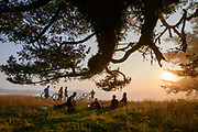 Mountain bikers gather under a fern-clad Fir tree as coastal fog rolls into Willow Creek at sunset in Sonoma Coast State Park near Jenner, California