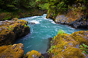 "The Quinault River is a 69-mile (111 km) long[2] river located on the Olympic Peninsula in the U.S. state of Washington. It originates deep in the Olympic Mountains in the Olympic National Park. It flows southwest through the ""Enchanted Valley""."