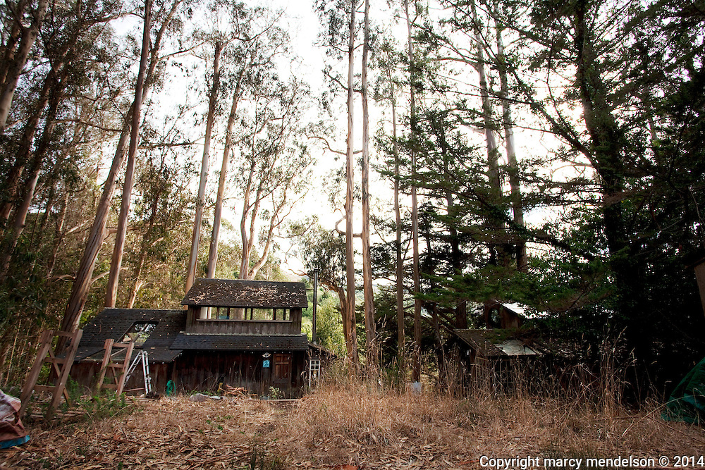 The last remaining occupied houses in Druid Heights overlook a hidden, peaceful valley in deep in Muir Woods.  With no location on a map, and access via hidden fire road, Druid Heights has remained a well-kept secret even to the locals since 1954.