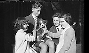 Children arrive home from Gaeltacht 4th july 1961