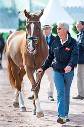 Jutta Rus Machan, (AUT), Prada - Horse Inspection - Alltech FEI World Equestrian Games™ 2014 - Normandy, France.<br /> © Hippo Foto Team - Jon Stroud<br /> 25/06/14