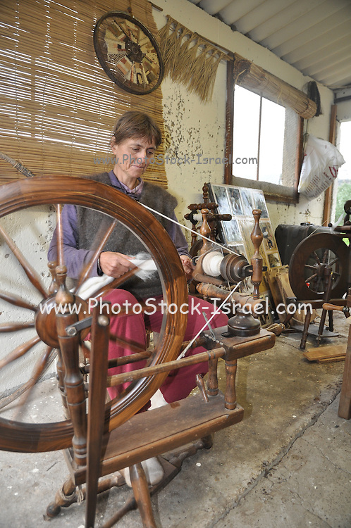 Old Fashioned manual wool spinning wheel