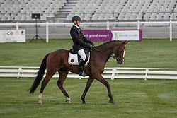 Steegmans Raf, BEL, Chico's Man VDF Z<br /> World Championship Young Eventing Horses<br /> Mondial du Lion - Le Lion d'Angers 2016<br /> © Hippo Foto - Dirk Caremans<br /> 20/10/2016