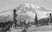 9616-A63. Mount Rainer, with old cars. 1920.