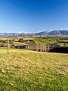 MacKenzie Country's pastures with the Albury Range in the background, New Zealand.