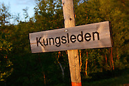 The famous King's Trail hiking trail, Saltoluokta area, bordering to the Stora Sjöfallet National Park, Greater Laponia rewilding area, Lapland, Norrbotten, Sweden