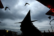A witch with a group of bats sit on a perch in front of a home in Seattle.<br /> John Lok / The Seattle Times