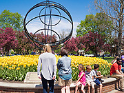 "03 MAY 2020 - PELLA, IOWA: People look at the sundial and blooming tulips in downtown Pella, Iowa. Pella is a small community in central Iowa. The town's economy is driven by tourism and the Tulip Festival, the largest tourist event of the year, has already by canceled for 2020 because of fears that the festival could become a COVID-19 (Coronavirus/SARS-CoV-2) ""Super Spreader"". The Governor of Iowa reopened 77 of Iowa's 99 counties. The counties that were reopened have reported low incidences of Coronavirus. Marion County, where Pella is located, has reported 12 cases of Coronavirus. There have been 9,169 confirmed cases of Coronavirus in Iowa, including 1,476 cases in the Des Moines area, less than one hour away. Many people from Des Moines drove to Pella this weekend to see the tulips for which the town is famous.     PHOTO BY JACK KURTZ"