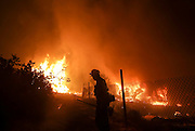 A firefighter battles the Blue Cut wildfire near Cajon Pass, north of San Bernardino, Calif., August 16, 2016. The fire is currently 9,000 plus acres, with 700 personnel on scene. Fifty-seven engines, 8 crews, 8 air tankers, 2 Very Large Air Tankers (VLATS), with additional firefighters and equipment on order. There is imminent threat to public safety, rail traffic and structures. With this being a very quickly growing wildfire, evacuation instructions have been issued. An estimated 34,500 homes and 82,640 people are being affected by the evacuation warnings.  AFP PHOTO / Ringo Chiu