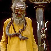 KATHMANDU, NEPAL. Hindu ascetic with cobra & trident (symbols of Shiva) at Patan Durbar Square.