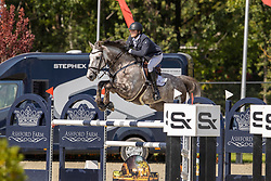 Norris Killian, IRL, Nacco Blue van Essene<br /> Belgian Championship 7 years old horses<br /> SenTower Park - Opglabbeek 2020<br /> © Hippo Foto - Dirk Caremans<br />  13/09/2020