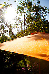 Close up of an open orange parasol in the morning sunlight