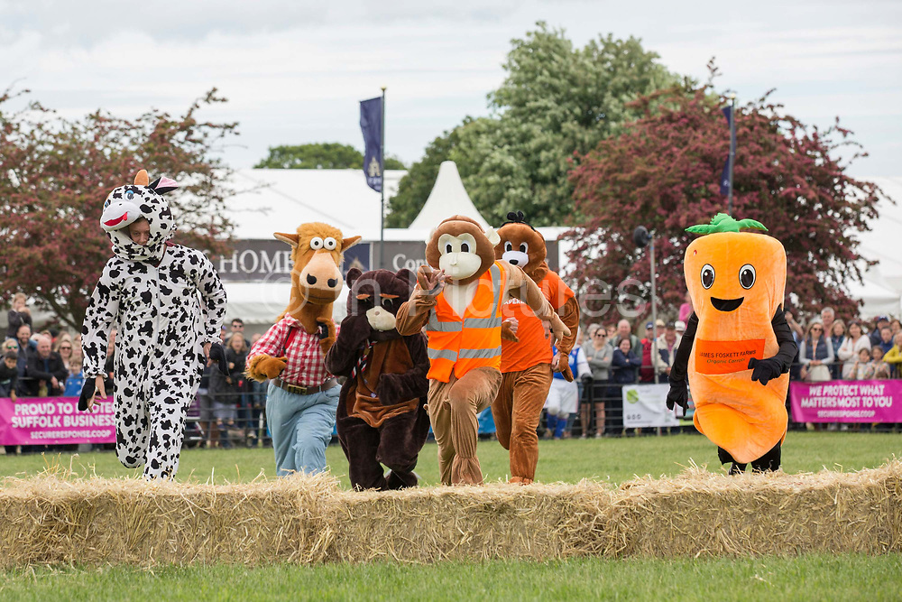 The mascot derby at the annual Suffolk Show at the Suffolk Show Ground on the 29th May 2019 in Ipswich in the United Kingdom. The Suffolk Show is an annual show that takes place in Trinity Park, Ipswich in the English county of Suffolk. It is organised by the Suffolk Agricultural Association.