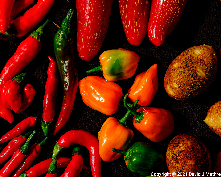 Hot Peppers. Image taken with a Fuji X-H1 camera and 80 mm f/2.8 OIS macro lens.