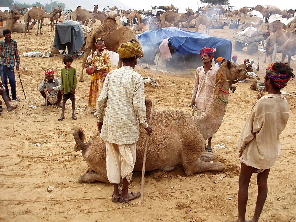 Bargaining at the Camel Fair, Pushkar, Rajasthan.