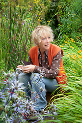 Carol Klein marking eryngium flowerheads with coloured ribbon and taking notes in preparation for collecting seeds