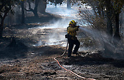 A firefighter puts out a hotspot on a brushfire, Sunday, Sept. 3, 2017, in Burbank, Calif. Several hundred firefighters worked to contain a blaze that chewed through brush-covered mountains, prompting evacuation orders for homes in Los Angeles, Burbank and Glendale.(Photo by Ringo Chiu)<br /> <br /> Usage Notes: This content is intended for editorial use only. For other uses, additional clearances may be required.
