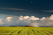 Ploughed fields near Dwyran, West Anglesey, Wales, with huge cumulonimbus clouds and a half moon.