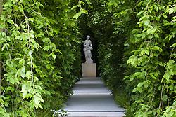 Weeping hornbeam arbour leading to statue of Hygiea in the Laurent-Perrier Garden. Design: Tom Stuart-Smith - Chelsea 2005