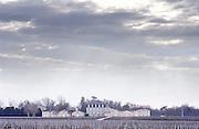 Vineyard. Chateau Grand Puy Lacoste, Pauillac. Medoc, Bordeaux, France