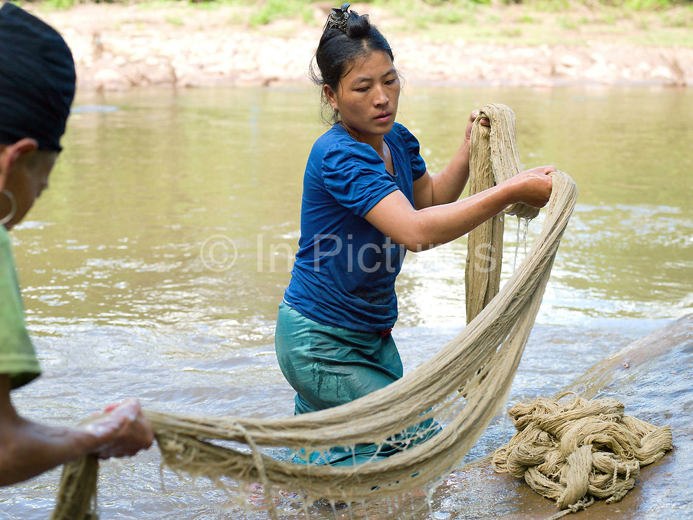 After boiling in ash water to turn the hemp yarn a white colour, the skeins of hemp fibre are washed in the Nam Khiew river (a tributary of the Nam Kang), Ban Tatong, Phongsaly province, Lao PDR. Making hemp fabric is a long and laborious process; the end result is a strong durable cloth with qualities similar to linen which the Hmong women use to make their traditional clothing. In Lao PDR, hemp is now only cultivated in remote mountainous areas of the north. The remote and roadless village of Ban Tatong is situated along the Nam Kang river (an offshoot of the Nam Ou) and will be relocated due to the construction of the Nam Ou Cascade Hydropower Project Dam 7.