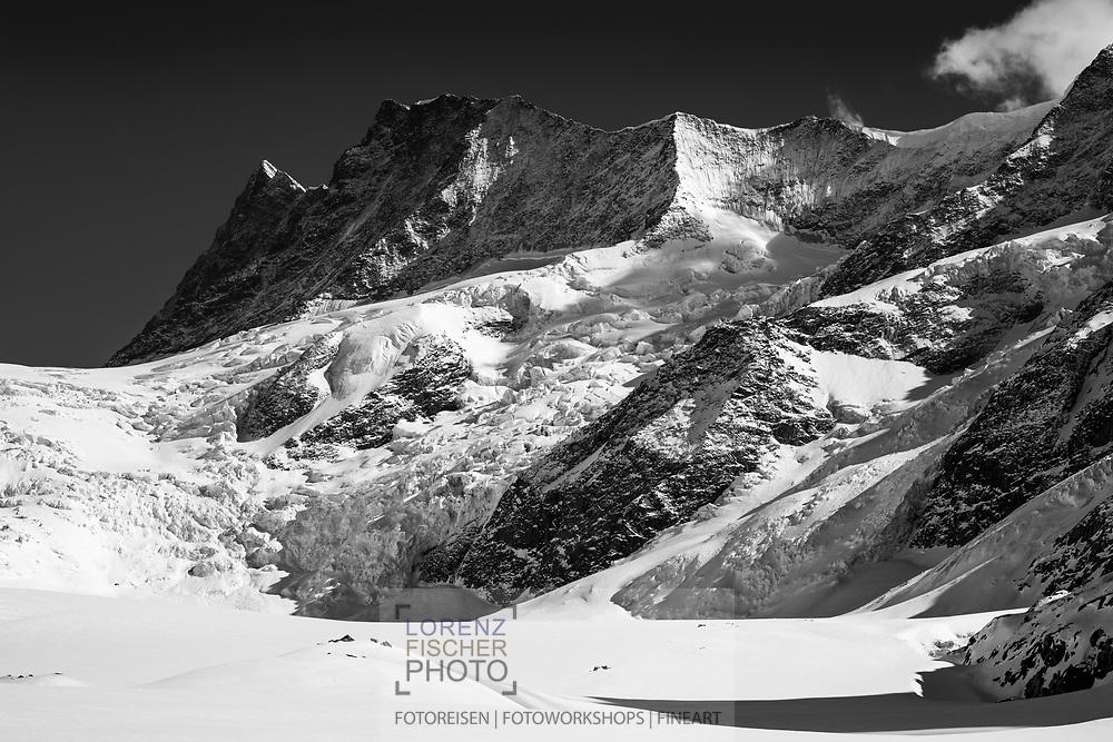 Die Gipfel von Finsteraarhorn und Agassizhorn über den Gletscherabbrüchen des Unteren Grindelwaldgletschers oder Ober Ischmeer in der Nähe der Schreckhornhütte am Abend, Grindelwald, Berner Oberland, Schweiz<br /> <br /> The summits of Finsteraarhorn and Agassizhorn over the  the ice breaking-up of the Lower Grindelwald Glacier or Upper Ischmeer near the Schreckhornhütte in the evening, Grindelwald, Bernese Oberland, Switzerland