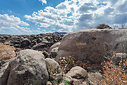 Damage from the Yarnell Hill Fire in July, 2013, in the rocks surrounding Carraro's Gratto in Yarnell, Arizona, including the rock named Elephant GOP by Alessio Carraro.
