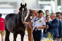 Philippaerts Nicola, BEL, Chilli Willi<br /> World Equestrian Games - Tryon 2018<br /> © Hippo Foto - Sharon Vandeput<br /> 17/09/2018