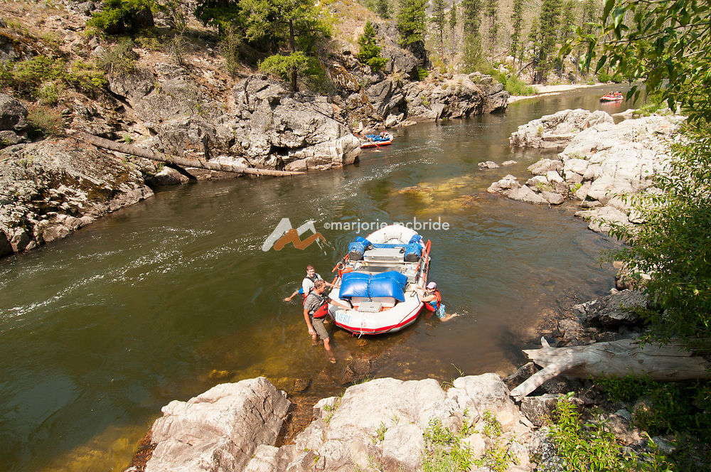 Boaters enjoy swimming on a hot day after Pistol Creek rapid on the Middle Fork of the Salmon River, Idaho.