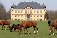 20 APR 2003, HOHEN LUCKOW/GERMANY:<br /> Pferde vor dem barocken Herrenhaus, Gut Hohen Luckow, Mecklenburg-Vorpommern. Die Kanzlerin wird die Regierungschefs des G8 Gipfels hier zu einem Abendessen empfangen<br /> IMAGE: 20030420-01-013