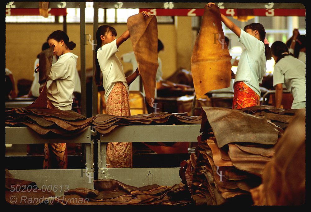 Women in sarongs inspect rubber mats with scissors to cut out impurities before export; Krabi. Thailand