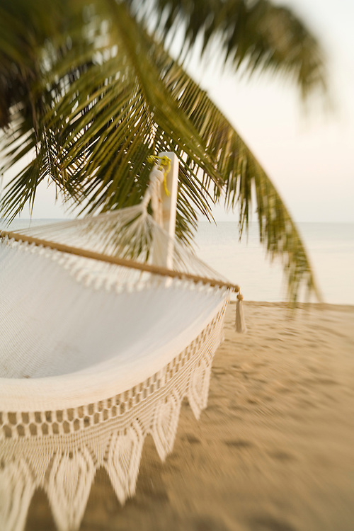 Woven hammock under palm tree on beach near Caribbean Sea, Jaguar Reef Lodge, Hopkins, Stann Creek District, Belize, Central America   PR