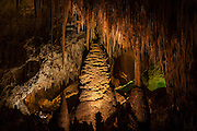 A variety of speleothems, including giant stalagmites, columns and soda straws, are located in the Hall of Giants, a section that houses the largest formations in Carlsbad Caverns National Park, New Mexico. The tallest column rises 62 feet (19 meters).