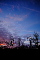 Colorful Clouds at Dawn. Composite  8 of 12 images taken with a Fuji X-T2 camera and 8-16 mm f/2.8 lens (ISO 200, 16 mm, f/5.6, 1/60 sec). Raw images processed with Capture One Pro and AutoPano Giga Pro.