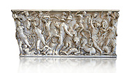 Roman sarcophagus depicting a battle between Achilles and Pentesilea and Amazons, the faces of the deceased have been sculpted over the Greek heroes, circa 230-250 AD, inv 933, Vatican Museum Rome, Italy,  white background ..<br /> <br /> If you prefer to buy from our ALAMY STOCK LIBRARY page at https://www.alamy.com/portfolio/paul-williams-funkystock/greco-roman-sculptures.html . Type -    Vatican    - into LOWER SEARCH WITHIN GALLERY box - Refine search by adding a subject, place, background colour, museum etc.<br /> <br /> Visit our CLASSICAL WORLD HISTORIC SITES PHOTO COLLECTIONS for more photos to download or buy as wall art prints https://funkystock.photoshelter.com/gallery-collection/The-Romans-Art-Artefacts-Antiquities-Historic-Sites-Pictures-Images/C0000r2uLJJo9_s0c