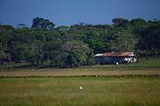 Macapa_AP, Brasil...Area de protecao ambiental, a cerca de 12 quilometros do centro de Macapa, abriga a comunidade quilombola do Curiau. ..Environmental protection area, about 12 km from the Macapa center, in this area there are quilombo Curiau...Foto: JOAO MARCOS ROSA / NITRO