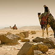 Man on camel with stone rubble at Giza, Cairo, Egypt (December 2007)