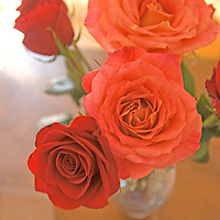 Rose bouquet in Bozeman, Montana